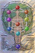 Sephirotic Tree Of Life